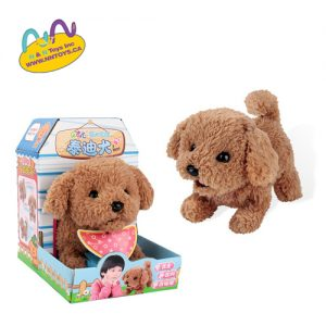 Puppy Family - Toy Poodle